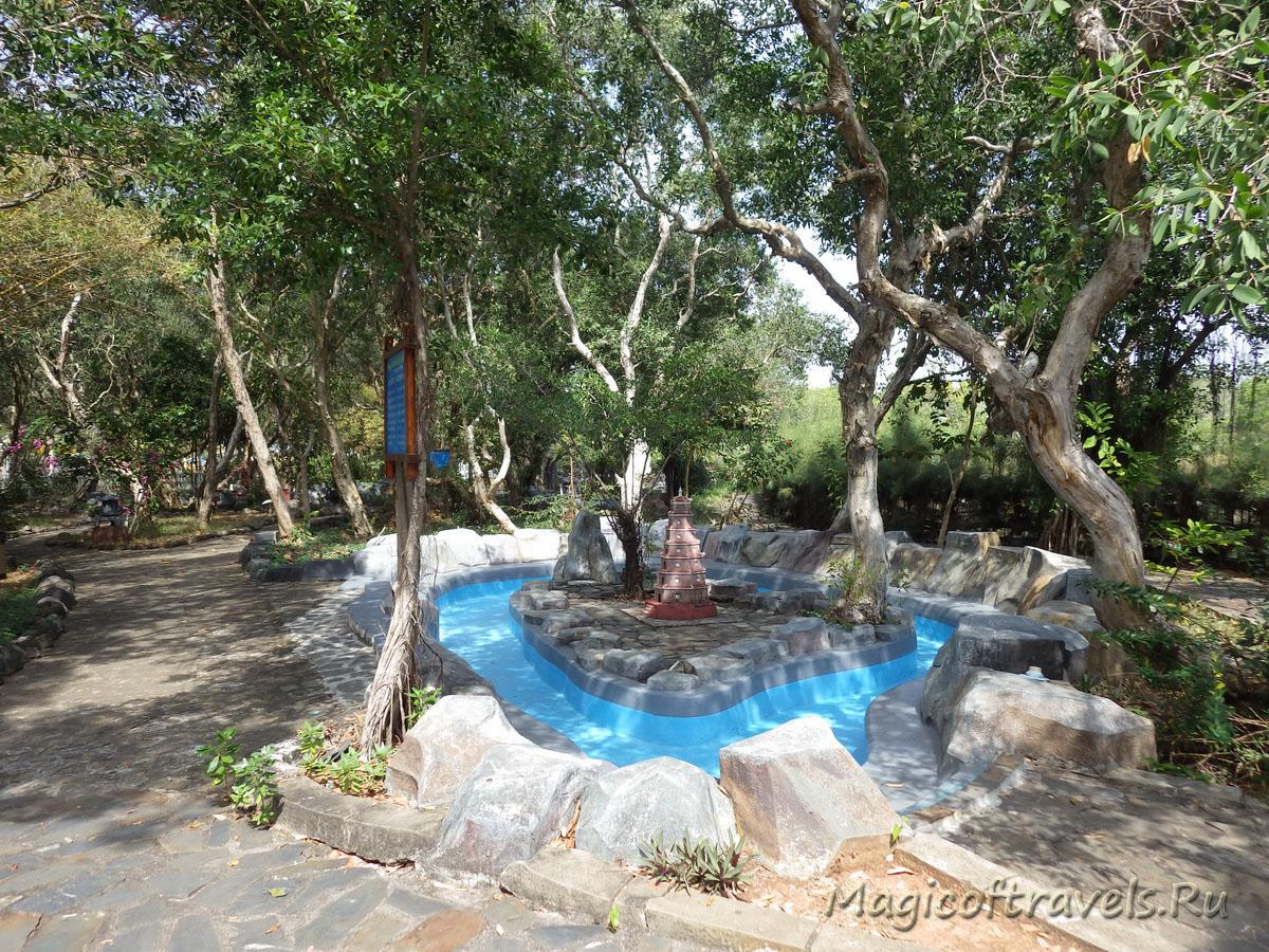 hot-spring 19