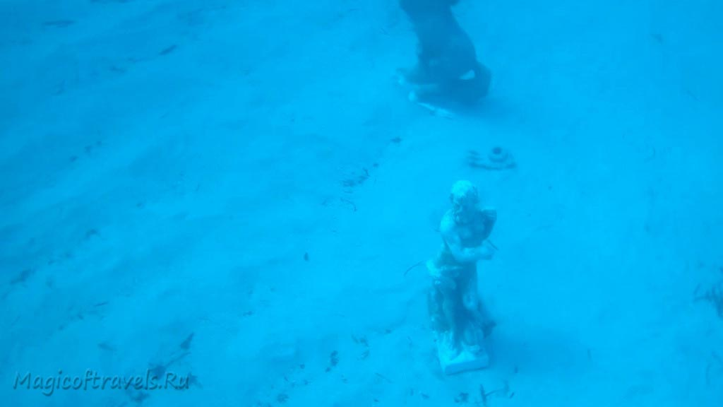 diving40