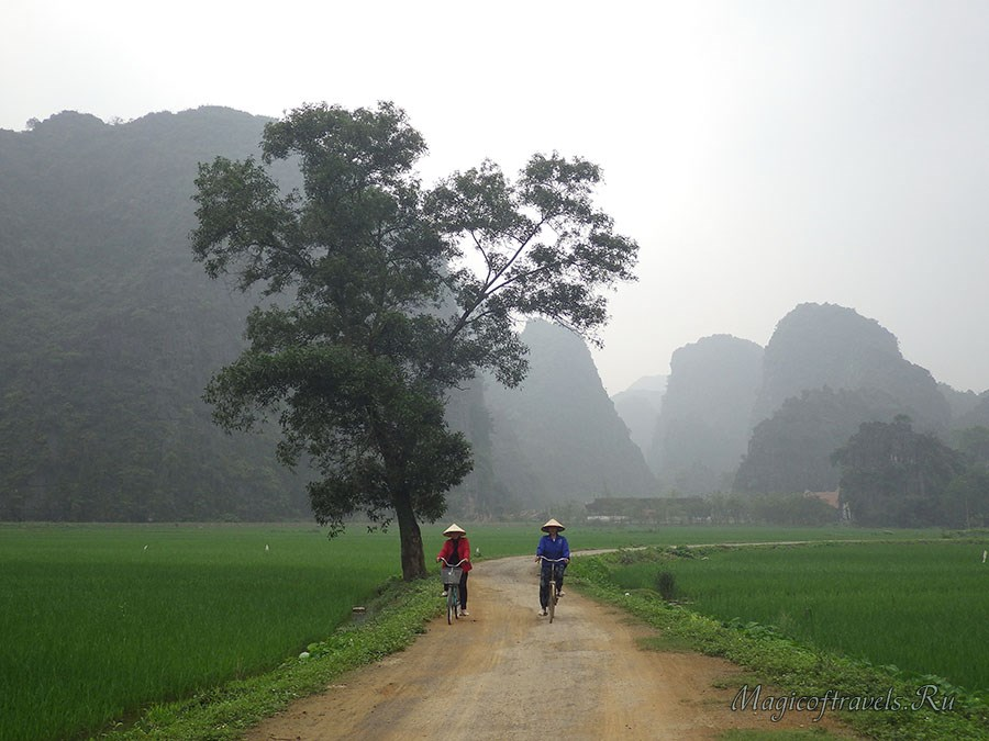 Классический пейзаж северного Вьетнама