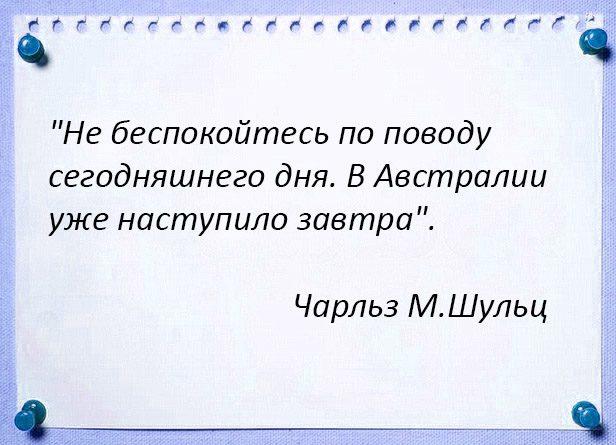 epigraf-31