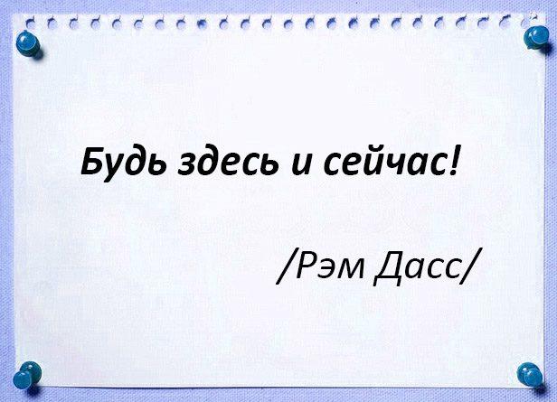 epigraf-33